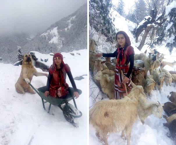 Девочка с собакой спасли козу с новорожденным козленком девочка, коза, ребята и зверята, спасение