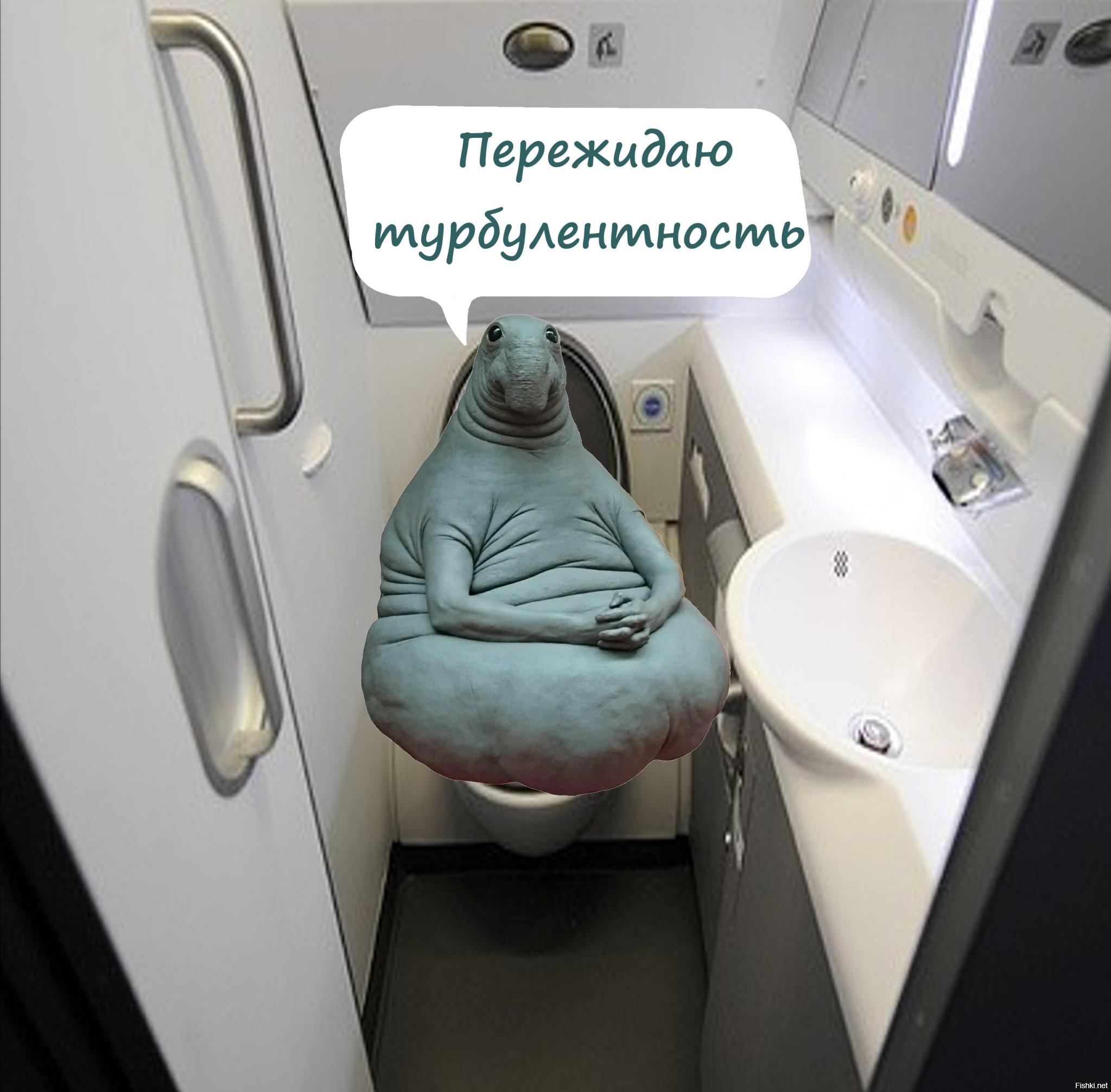 Смешная картинка в ожидании самолета