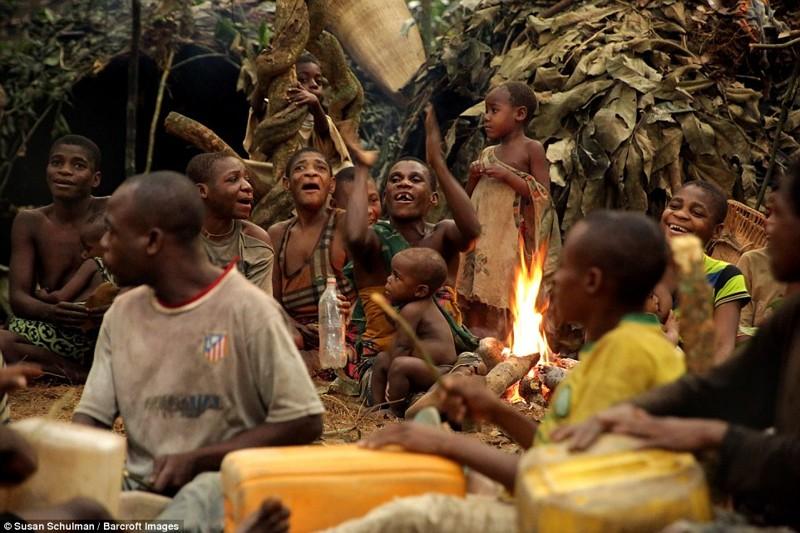 Сексуальные обычаи пигмеев африки