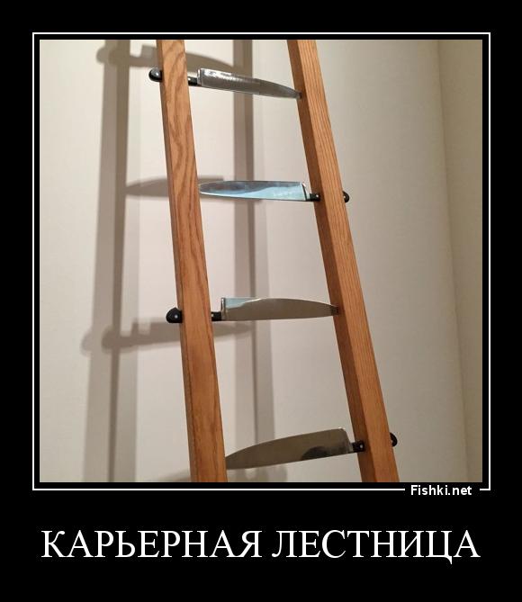считают, что лестница демотиватор костер компактный площади застройки