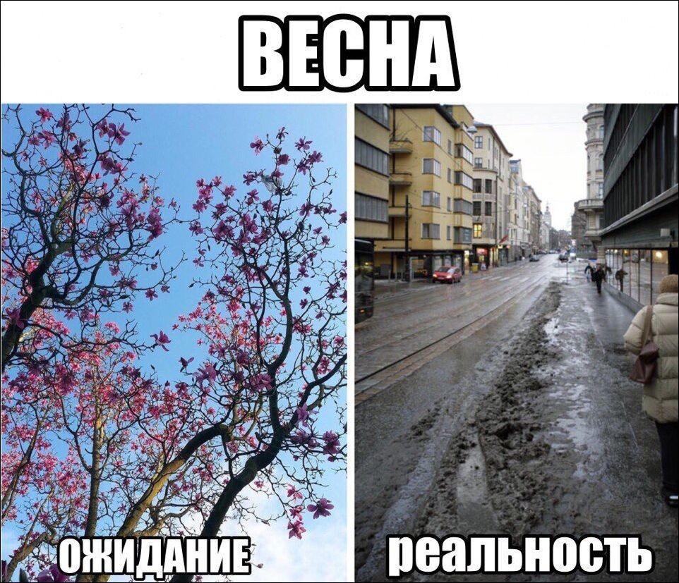 Весна близко картинки смешные