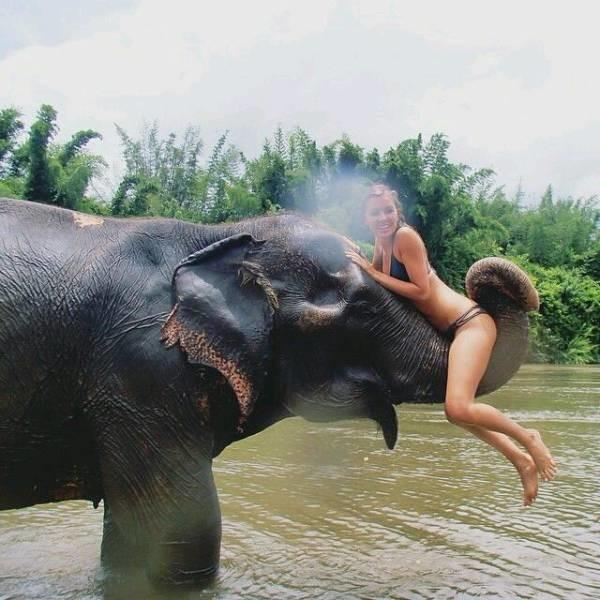 Открытки, картинки приколы таиланд