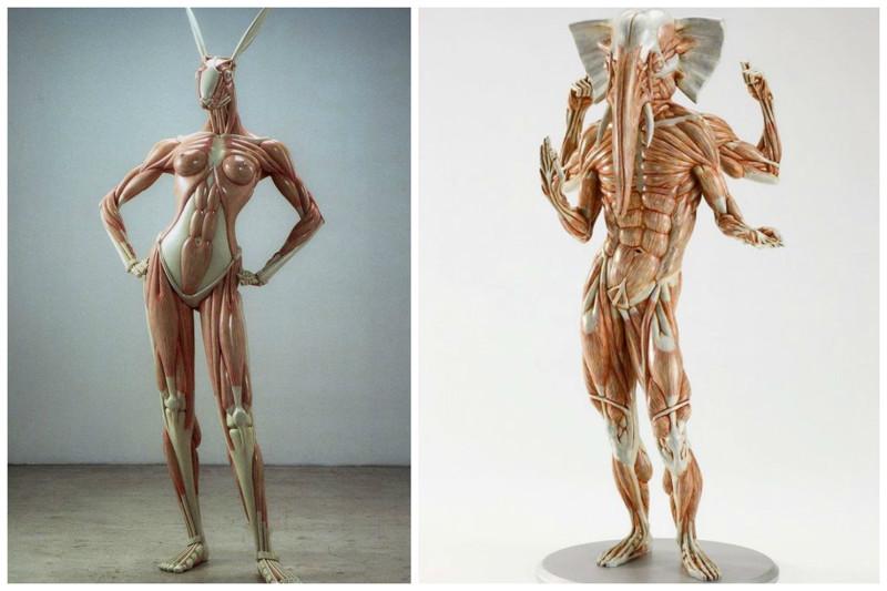 Анатомические скульптуры Masao Kinoshita art, Скульптуры, искусство, сумасшествие