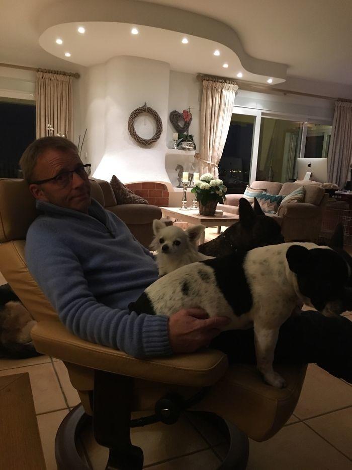 """""""Место на моих коленях ограничено, так что еще парочке пришлось лечь на пол"""" домашние животные, зоопарк на диване, собаки"""
