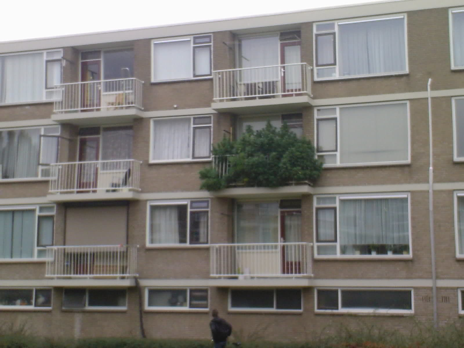 А какие балконы в голландии? - поросёнка.нет.
