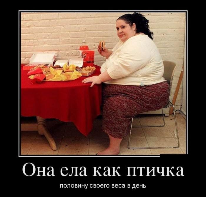 Картинки Демотиваторы Похудения.