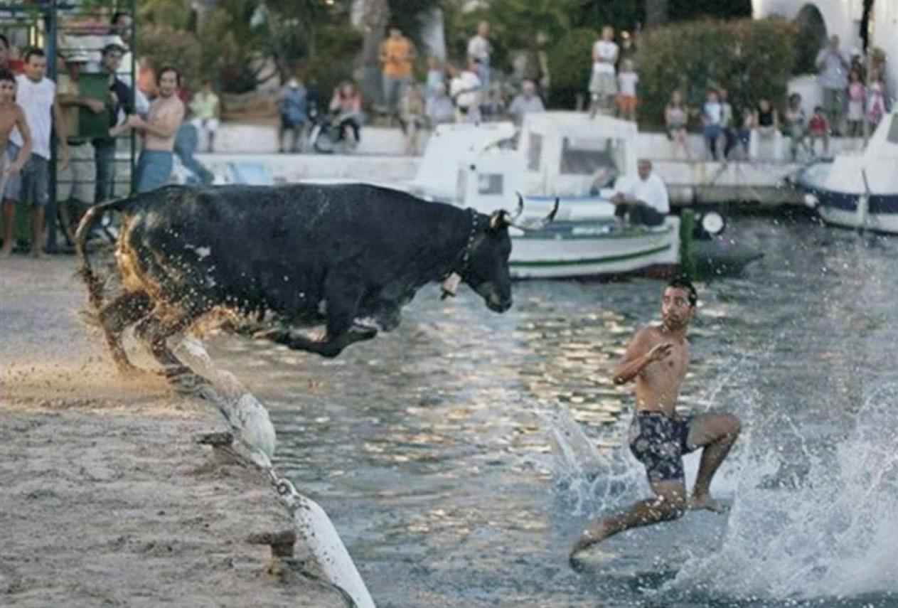 Даже животные заботятся о том, чтобы мы помылись . горячая вода, отключили воду, прикол