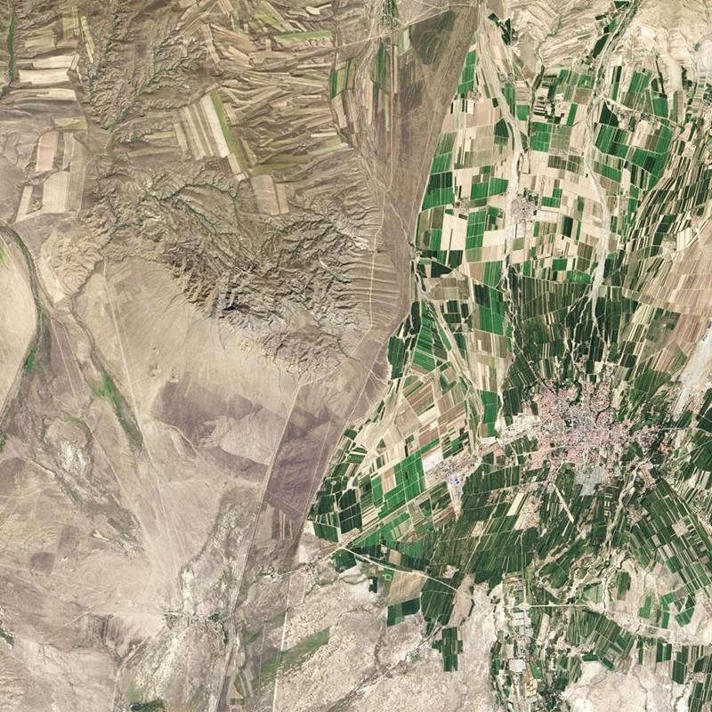 15. Справа Китай, слева Казахстан Прикольные фото, животные, чудеса