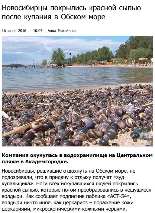 А купание порой может привести к неприятным последствиям купаться запрещено, пляжи россии, природа, россия, фото