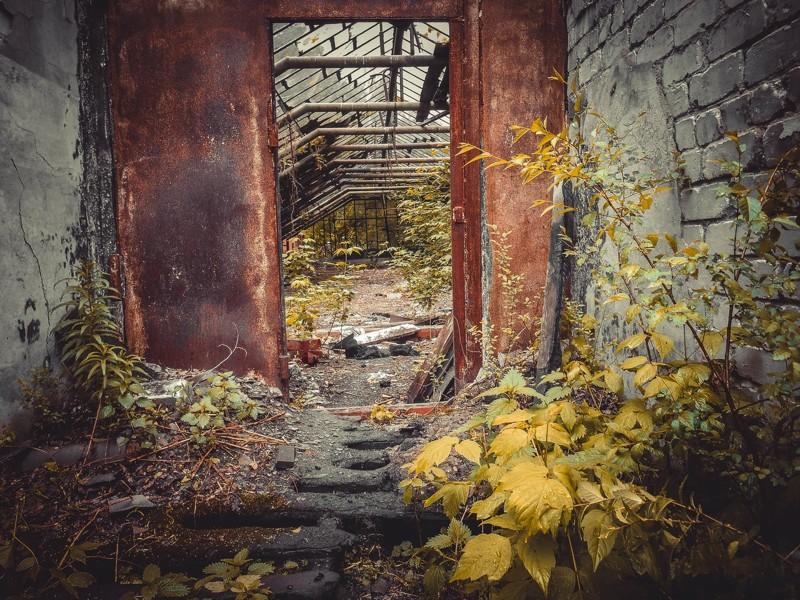 Заброшенные парники, теплицы и оранжереи город, заброшенное, теплицы, эстетика