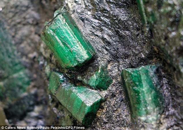 Владелец изумруда стоимостью 300 миллионов долларов живет в страхе ограбления бразилия, добыча ископаемых, драгоценный камень, изумруд, полезные ископаемые, раскопки, фото, шахта