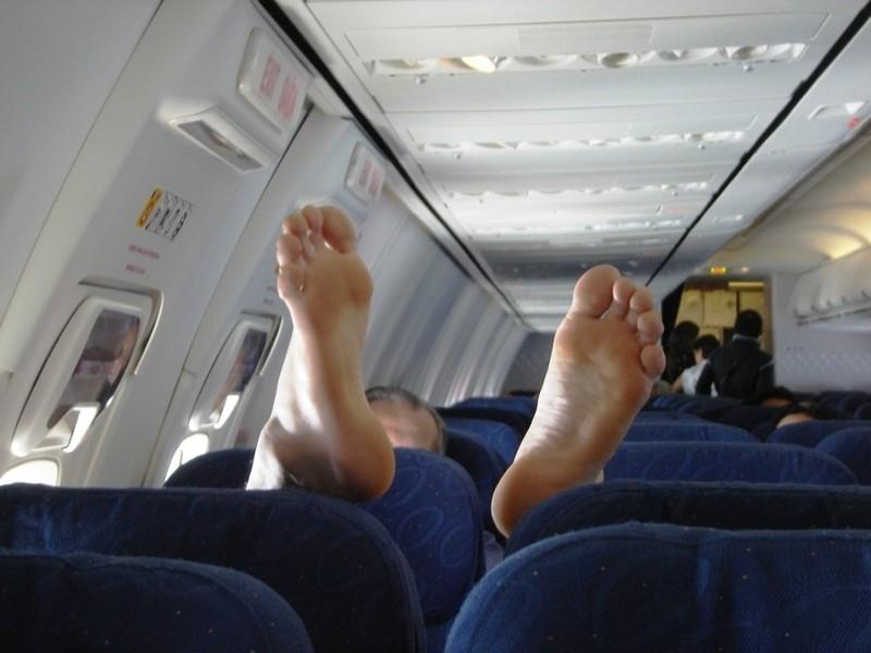 Самолет - настоящий рассадник бактерий авиация, аэропорты, безопасность, невероятно, неприятная правда, перелеты, самолеты, экипаж