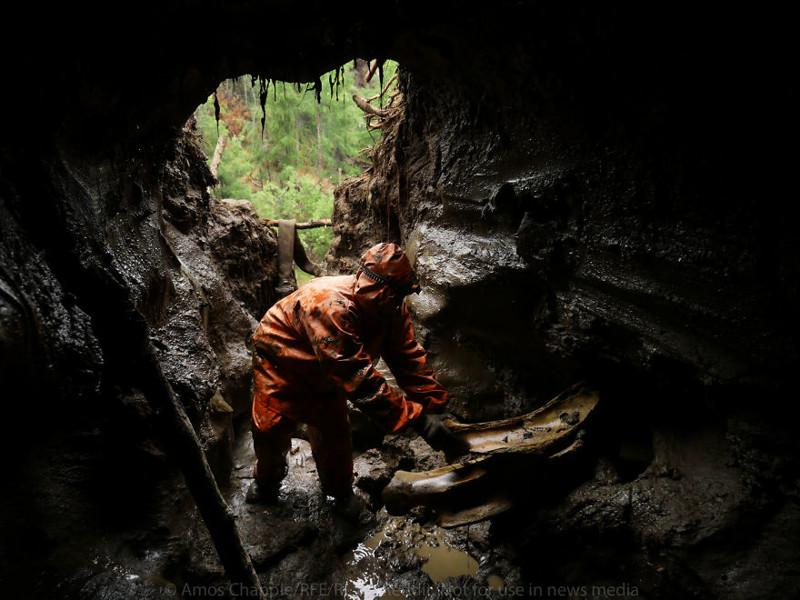 Охотники на мамонтов: черные копатели Сибири Мамонты, бивни, нелегальный бизнес, охота, охотники на мамонтов, раскопки, сибирь, черные копатели