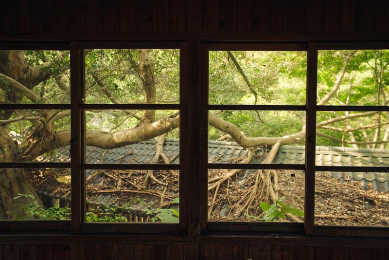 Виды из окон заброшенных домов вид из окна, город, заброшенное, окна, эстетика