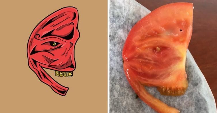 Злобный помидор art, видение, иллюзии, иллюстрации, парейдолия, рисунки, художник, юмор