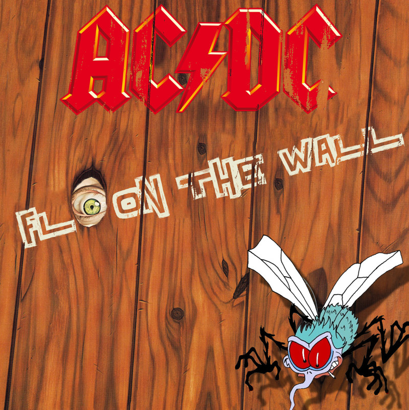 "AC/DC ""Fly on the Wall"""