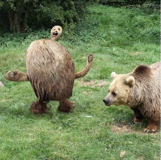 Это был медведь. Так его перерисовал отец семейства: Instagram, дети, иллюстрации, креатив, рисунки, творчество, фотошоп, юмор