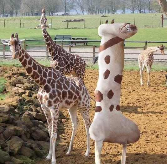 Жизнерадостный жираф Instagram, дети, иллюстрации, креатив, рисунки, творчество, фотошоп, юмор