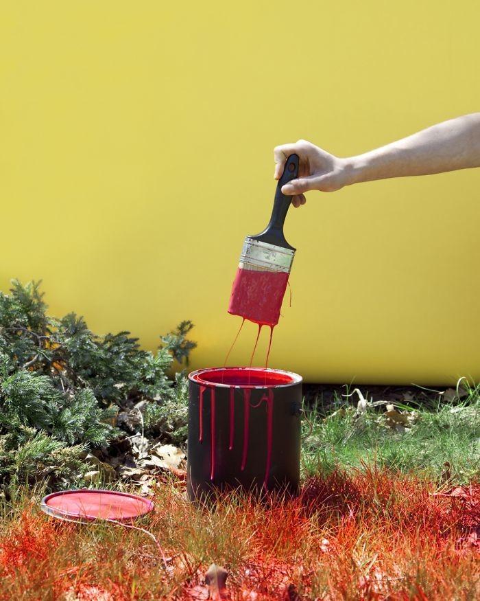 21. В Кентукки еще к тому же нельзя красить траву в красный цвет в мире, закон, люди, нелепость, прикол, сша, юмор