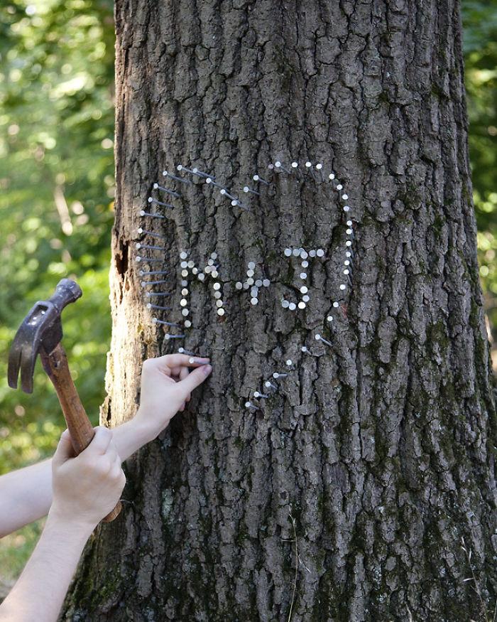 15. В Мэриленде того, кто вобьет в дерево гвоздь, накажут штрафом в размере 50 долларов США в мире, закон, люди, нелепость, прикол, сша, юмор