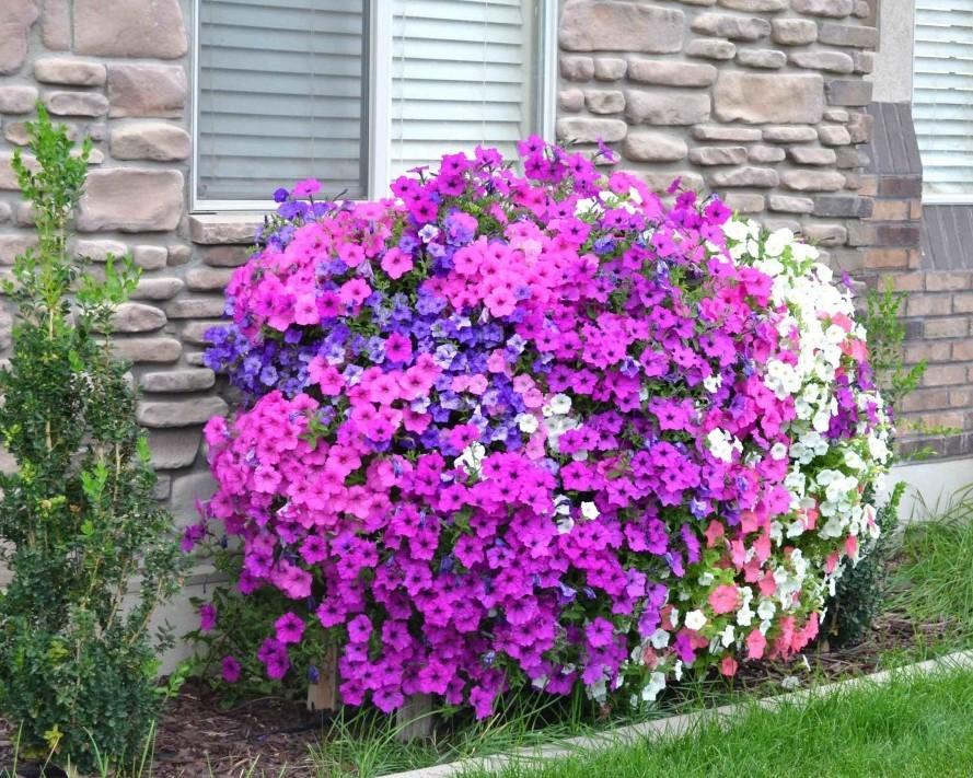 Ещё одна замечательная идея для дачи, которая порадует цветоводов идея для дачи, идея для сада, каскадная клумба, полезности, своими руками, цветоводство