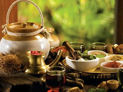 Традиционная медицина - это болезни жкт.лечение народными средствами