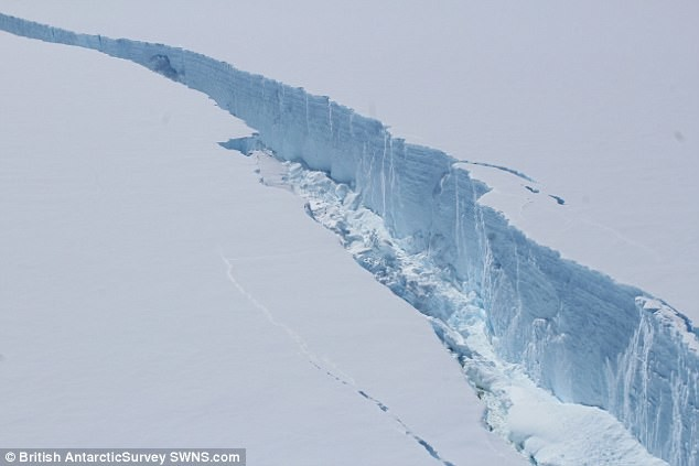 От Антарктиды откололся гигантский айсберг айсберг, антарктида, ледник, ледниковый, новости науки, ученые, шельф