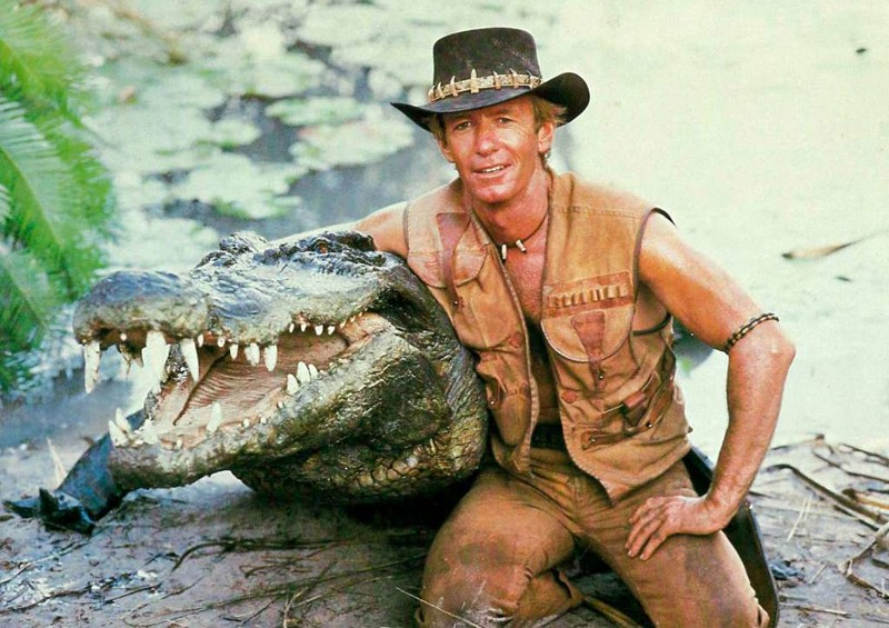 Крокодил эро