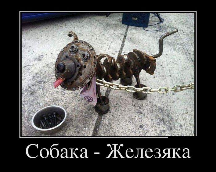 Собака-железяка демотиватор, демотиваторы, жизненно, картинки, подборка, прикол, смех, юмор