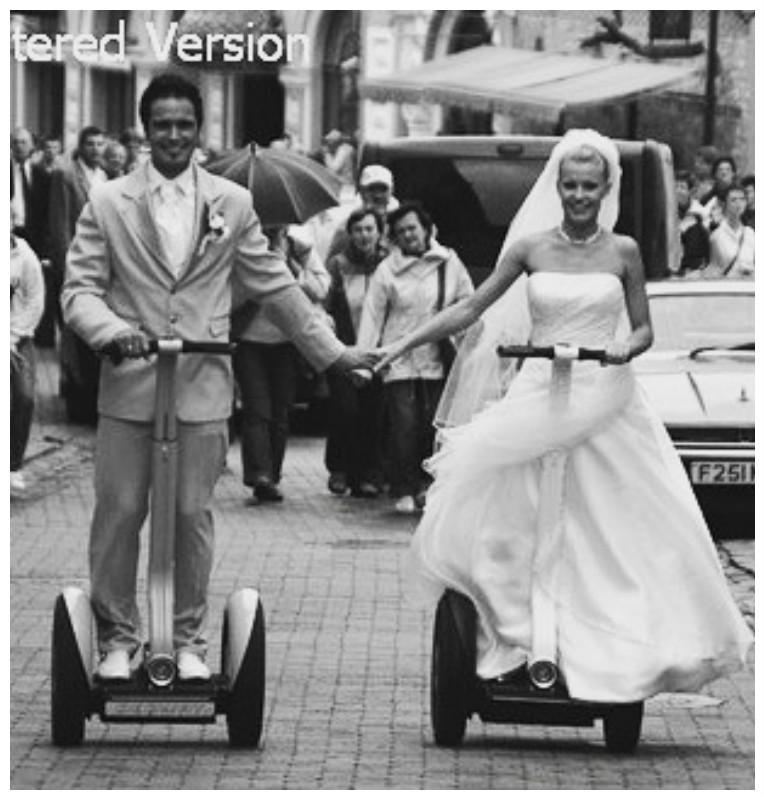 Свадьба на сегвеях? А почему бы и нет! баловство, гироскутер, ерунда, интересное, модное, сегвей, удобное