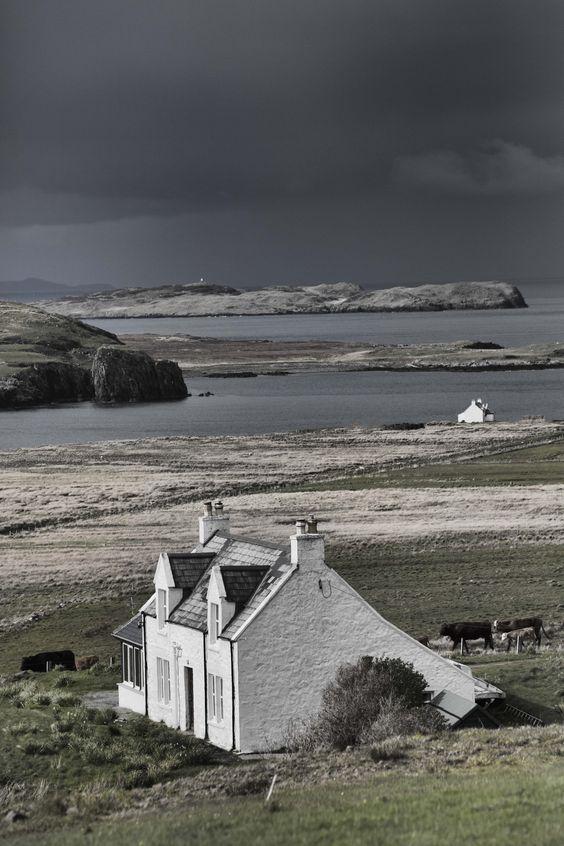 Красоты Шотландии день, животные, кадр, люди, мир, снимок, фото, фотоподборка
