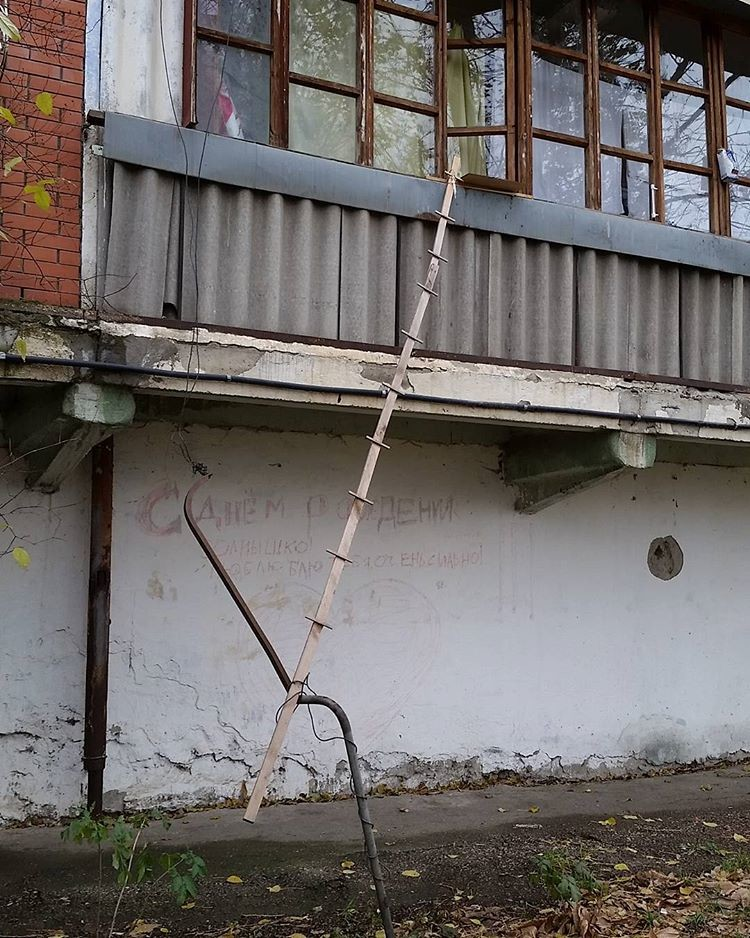 Интересное решение двор, забота, кормежка, коты, лестница, прикол