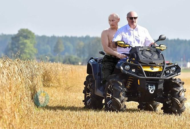 Любители фотожаб еще не отошли от последней рыбалки Путина (пост по ссылке) беларусы, картошка, лукашенко, прикол, путин, фотошоп, юмор