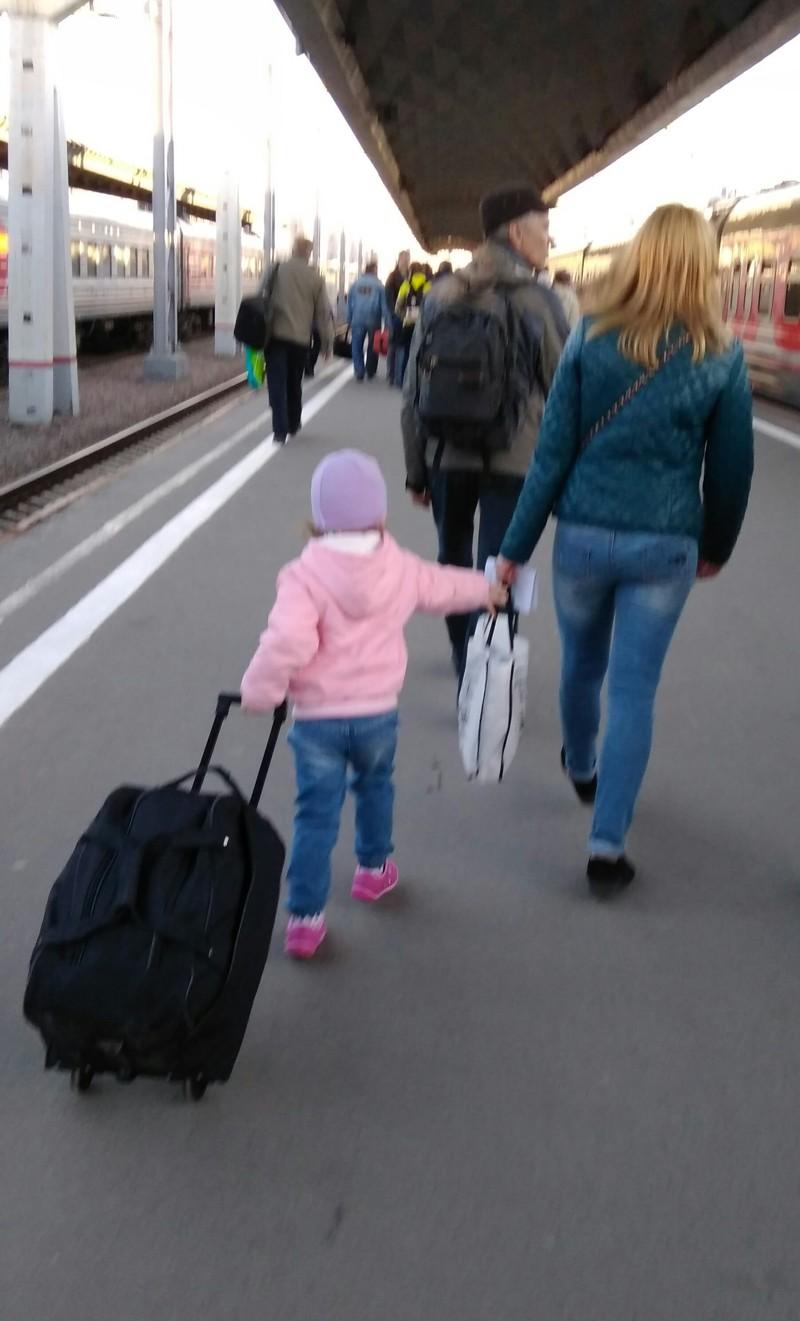 Романтика РЖД, благодаря которой еще покупают билеты на поезда Попутчица, девушки, купе, плацкарт, поезд, прикол, ржд, юмор