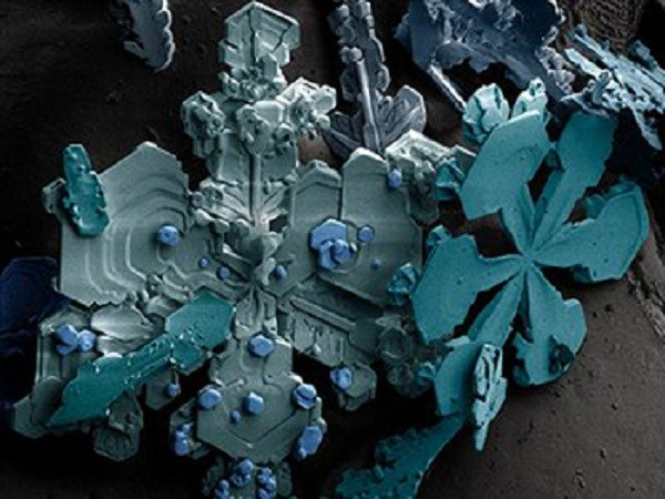 Снег интересно, крупным планом, микромир, микроскоп, под микроскопом, поразительно, странности природы, удивительное рядом
