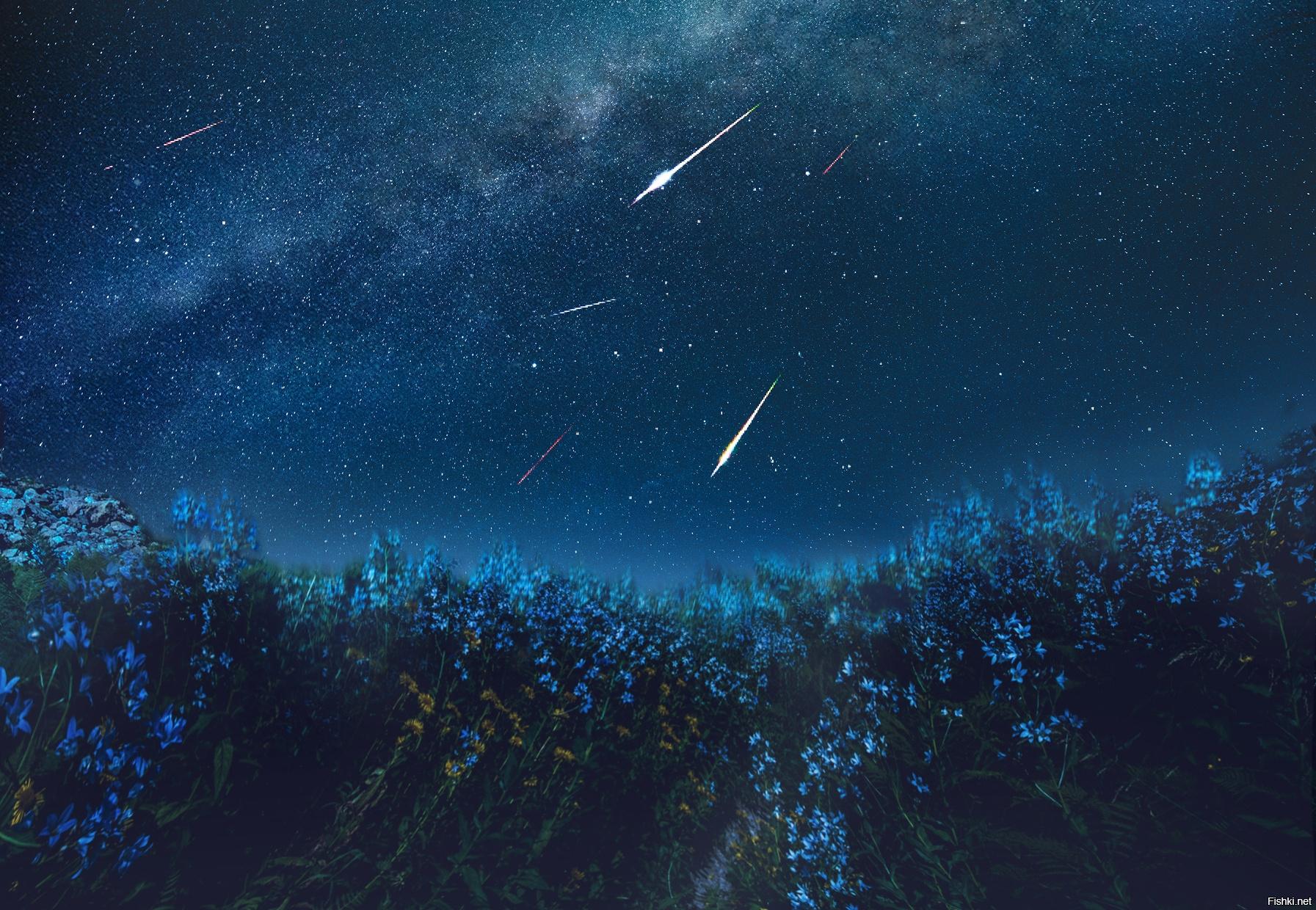родители звездный поток картинки шторы