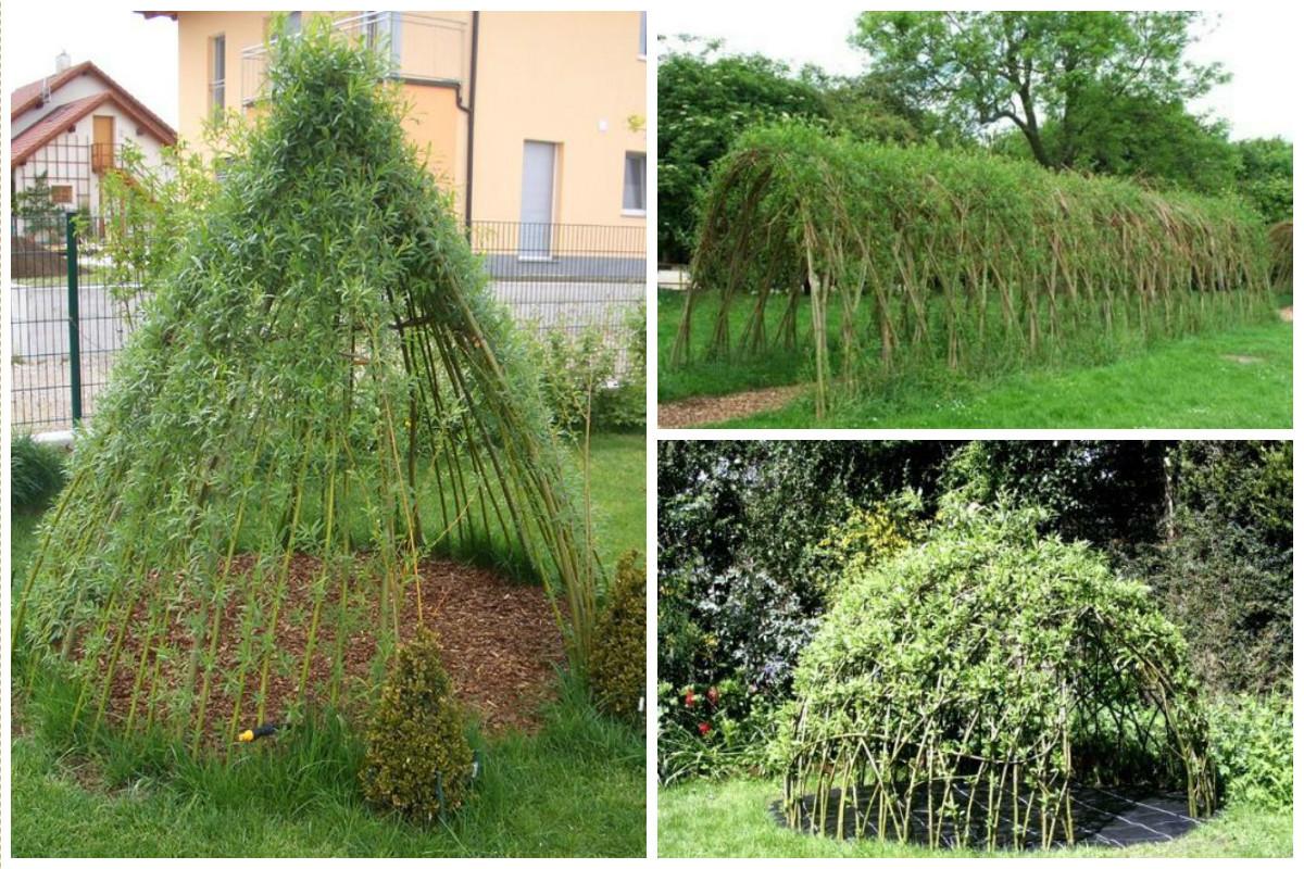 Шалаши и беседки деревья, заплести, интересное, красота, кустарник, сад, уход