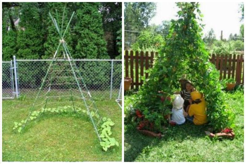Можно даже сделать однолетний шалаш - посадив полукругом фасоль, огурцы, вьющиеся цветы и т.д. деревья, заплести, интересное, красота, кустарник, сад, уход