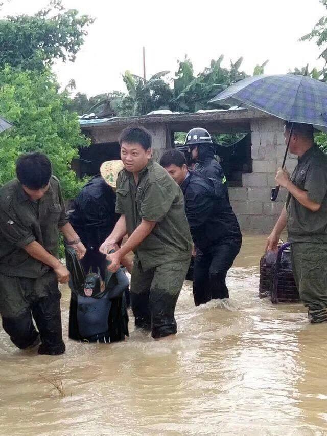 Спасение Бэтмена забавно, наводнение, прикол, свинья, улыбка, фотожаба, фотошоп, юмор