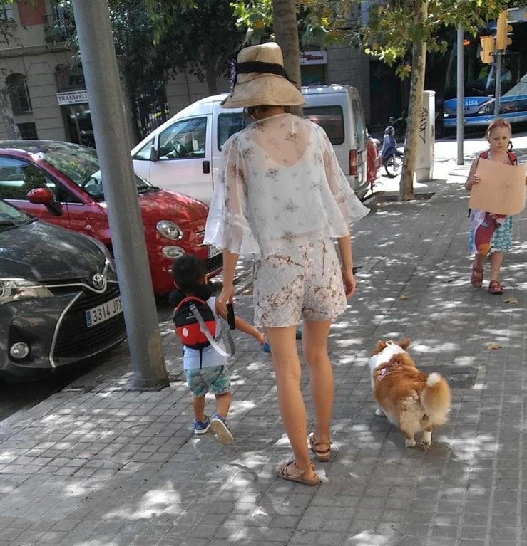 3. Ребенок на поводке, а собачка свободно прогуливается интересное, интернет, люди, мир, снимок, фото, явление