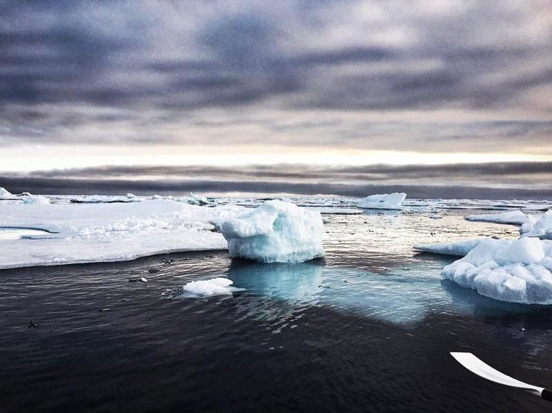 Так выглядят руки олимпийского чемпиона, покорившего Северный Ледовитый океан Северный Ледовитый океан, вода, люди, руки, спорт, чемпион