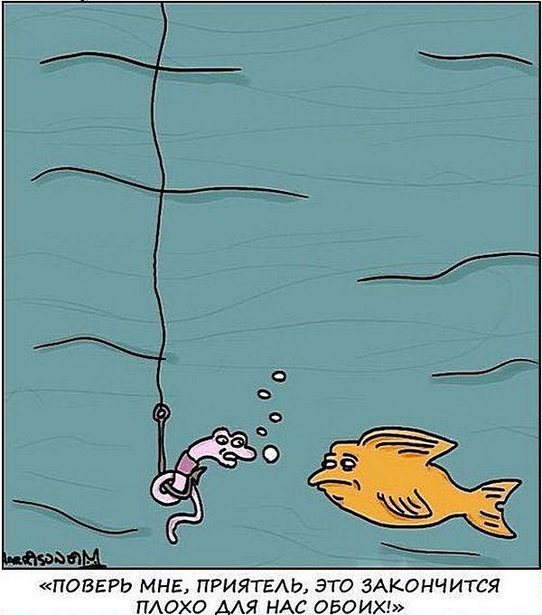 все статьи на тему рыбалка