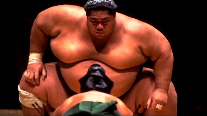 История сумо единоборства, история, сумо, япония