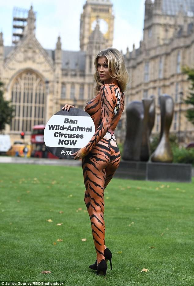 У этой девушки разбито сердце: муж развелся с ней после четырех лет брака Активистка, боди-арт, дикие животные, запрет, лондон, модель, тигрица, цирк