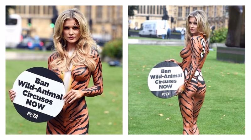 Модель демонстрирует кошачью грацию в борьбе за правое дело Активистка, боди-арт, дикие животные, запрет, лондон, модель, тигрица, цирк