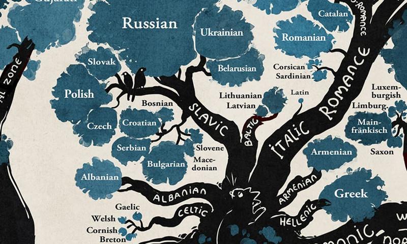Дерево языков: схема, составленная лингвистами, изменит ваш взгляд на человечество! Родной язык, все люди братья, инфографика, лингвистика, на чем мы говорим, сравнительное языкознание, языки, языковые группы