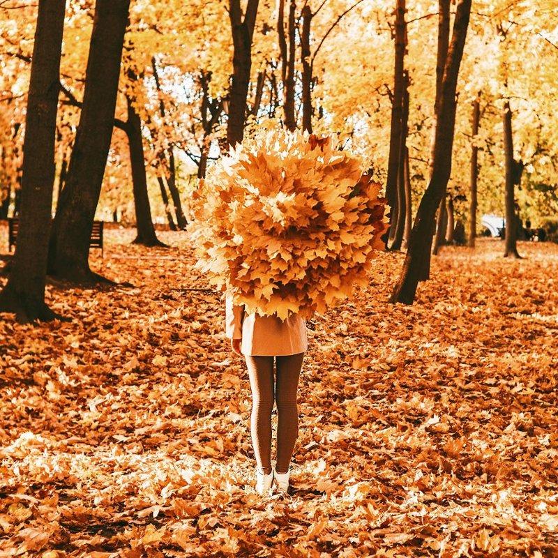 Еще Москва краски, листва, лондон, москва, осень, природа, фото, фотограф