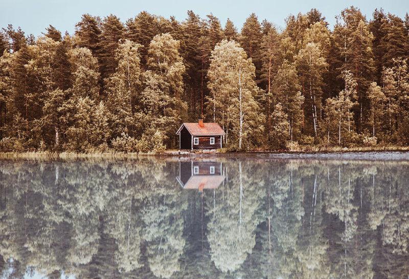 Финляндия краски, листва, лондон, москва, осень, природа, фото, фотограф