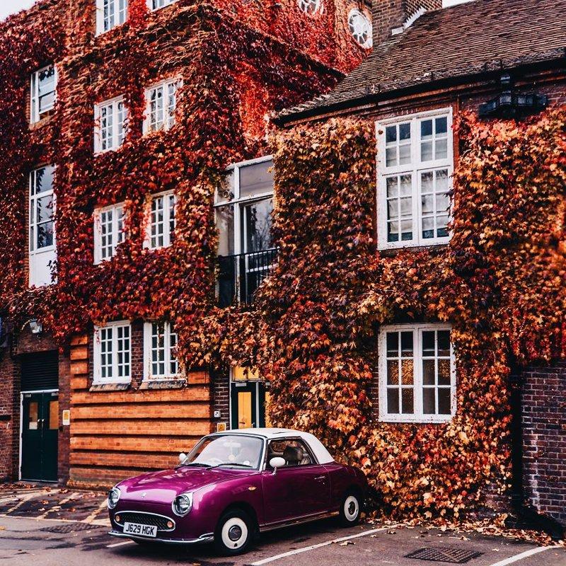 Лондон краски, листва, лондон, москва, осень, природа, фото, фотограф