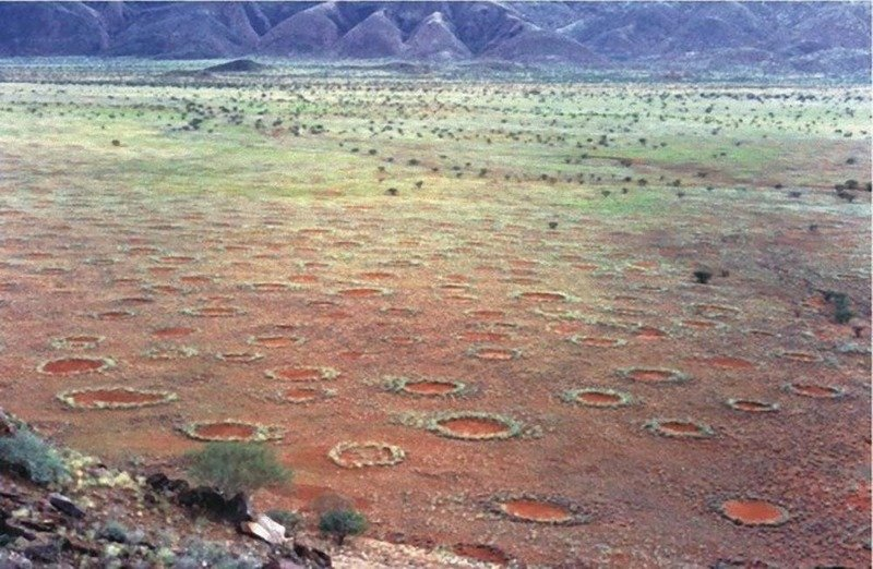 13. Загадочные круги в пустыне Намиб археолог, загадка, интересное, мир, находка, пустыня, тайна